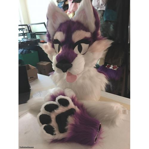 New Purple Kitty Partial Suit