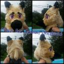 Fixer upper Fursuit head