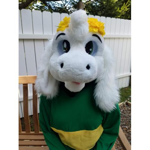 ASRIEL FURSUIT HEAD AND TAIL