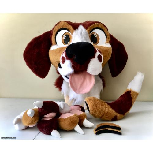 Beagle Dog Partial made by Pudgical