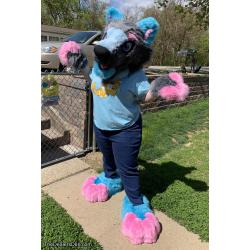 Dexter the Wolf Fursuit