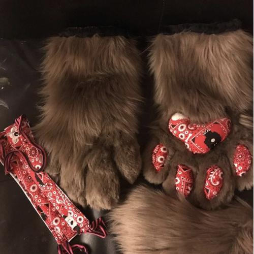 Puppy play time paws, tail, and face mask set