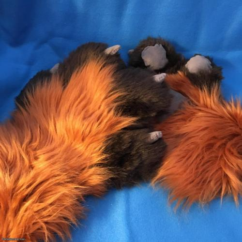 Paws, tail & sleeve set