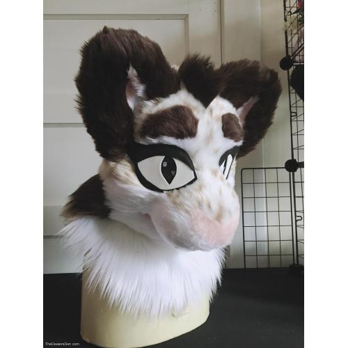 Kitty Pre-made