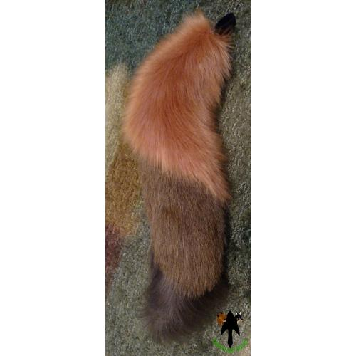 Dingo or Dhole Tail