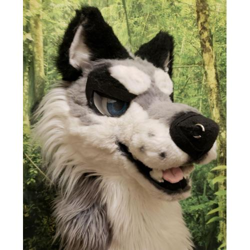 Wolf Fullsuit With Lots Of Art