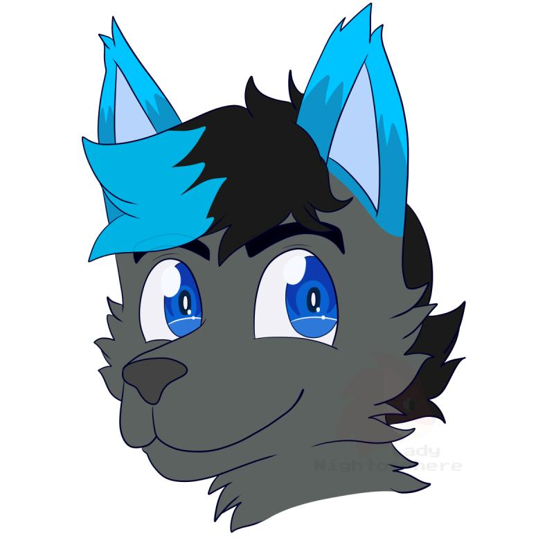 $5 USD Headshots