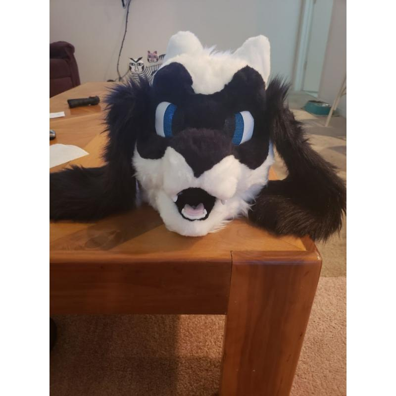 Furry Costume Fursuit White Riolu Pokemon Cosplay partial