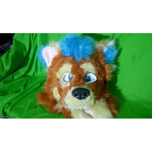 canine fursuit head with ref sheet