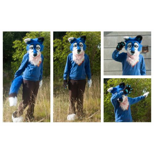 Cute Blue Fox Partial