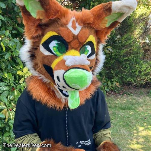 Coyote Partial Collab Premade