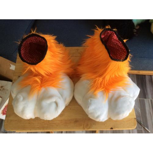 Orange feet paws