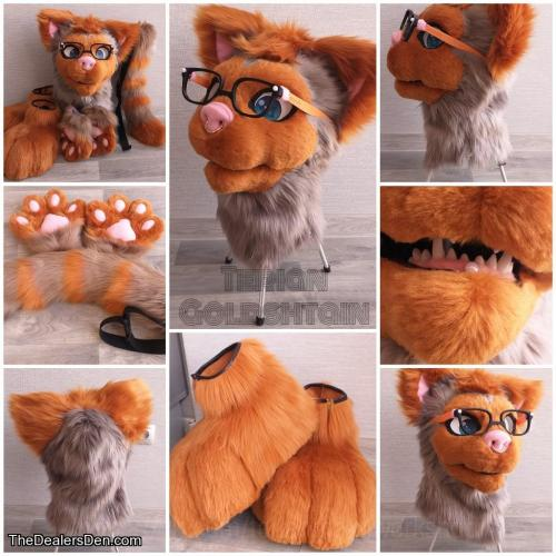 Fursuit - Terian Maincutton (with character rights)