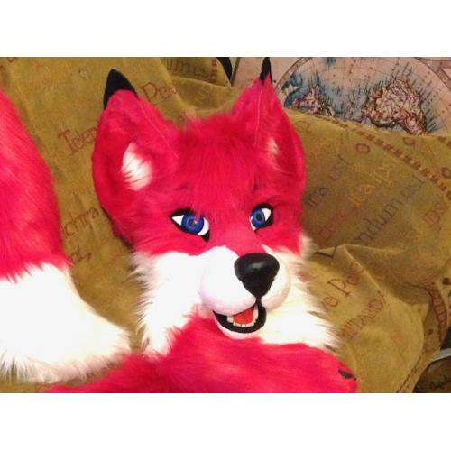 Pink Fox Partial