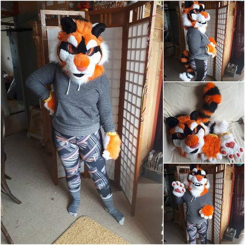 Tiger Fursuit Ladder Auction